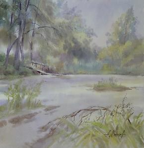 091 Июль. Заросший пруд